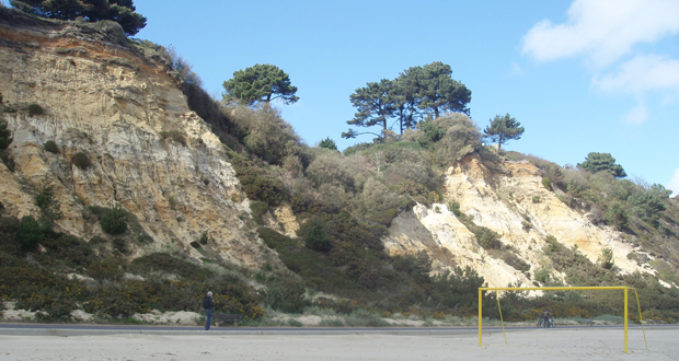 Canford-Cliffs-Chine-Beach-1