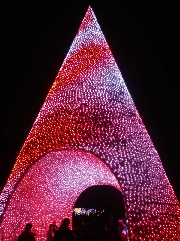 Christmas-Tree-Wonderland-1