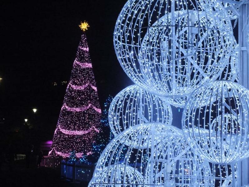 Christmas-Tree-Wonderland-12