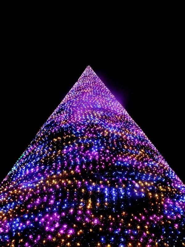 Christmas-Tree-Wonderland-14