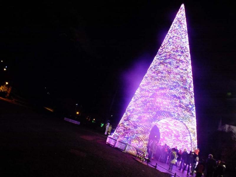 Christmas-Tree-Wonderland-15