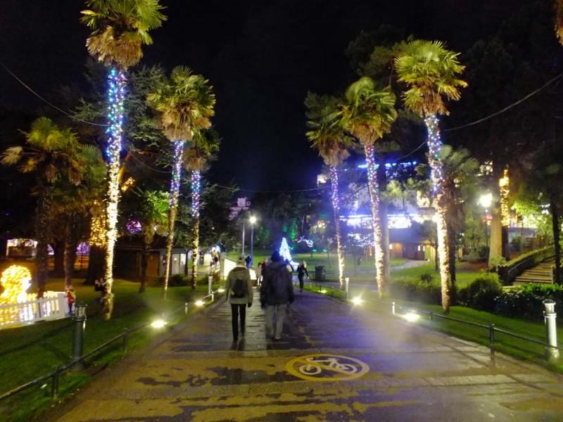 Christmas-Tree-Wonderland-22