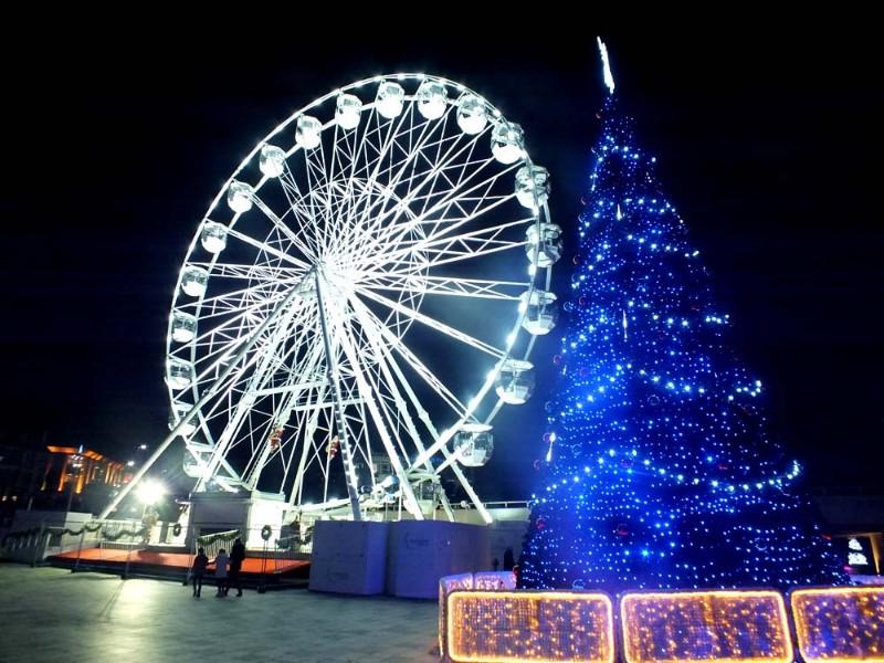 Christmas-Tree-Wonderland-3