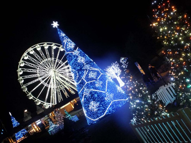 Christmas-Tree-Wonderland-8