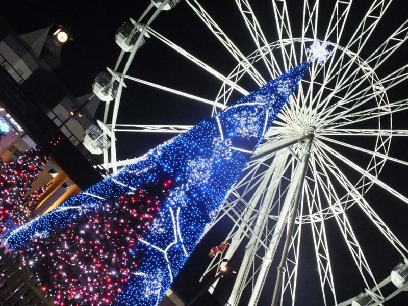 Christmas-Tree-Wonderland