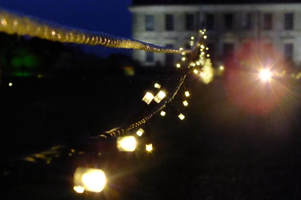 Kingston-Lacy-Christmas