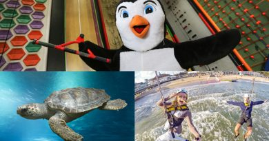 RockReef Oceanarium Collage