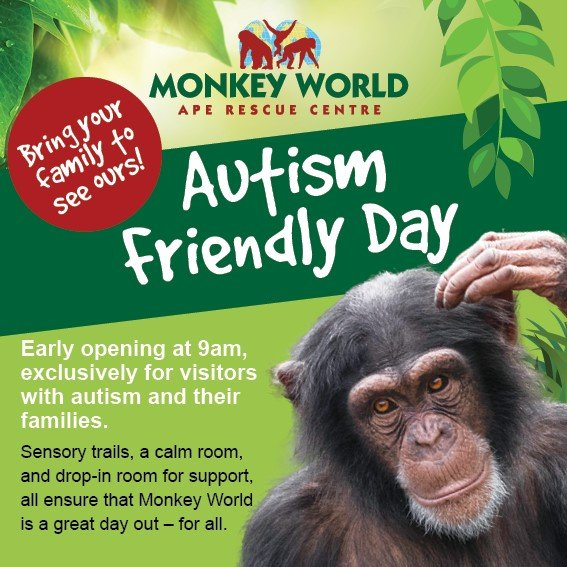 autism day monkey world