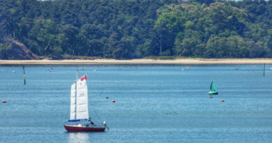 Sailing Yacht Brownsea Island Poole Harbour