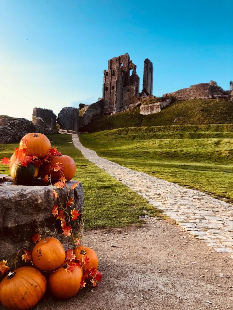 pumpkins corfe castle 768x1024